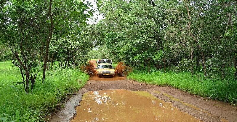 Parc national, Sénégal, Pluie