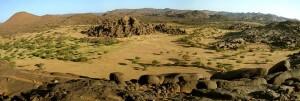 Réserve naturelle, Massif de l'Aïr, Désert de Ténéré
