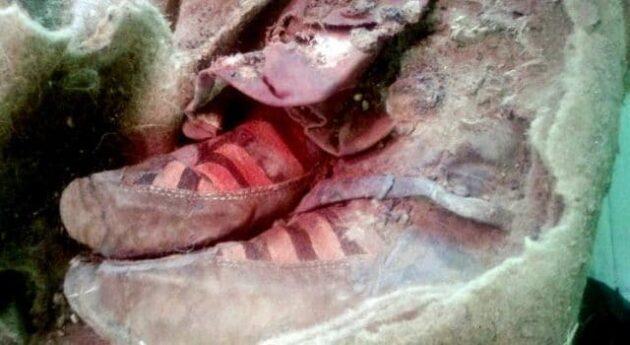 Une momie de 1500 ans retrouvée avec une paire d'Adidas aux pieds