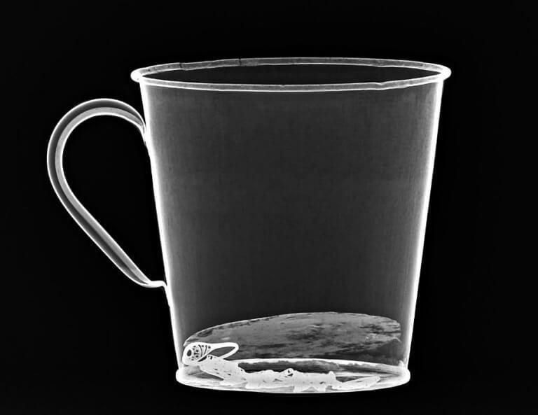 Scanner d'une tasse découverte à Auschwitz contenant une bague et un collier