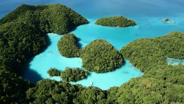 Le tourisme bleu aux Palaos
