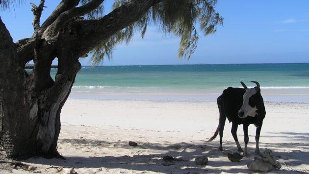 Comment atteindre Ramena, la plus belle plage de Madagascar ?