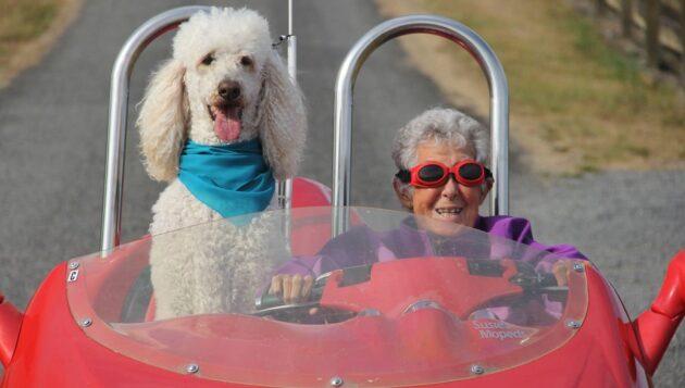 Pour finir sa vie, cette grand-mère a préféré un road trip à la chimiothérapie