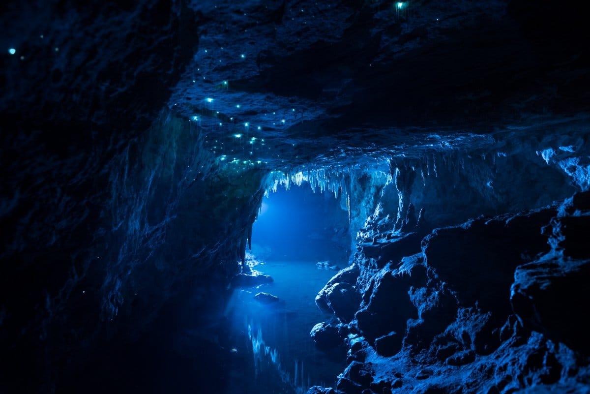Grottes de Waitomo, vers luisants, Nouvelle-Zélande