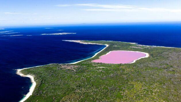 Le lac Hillier en Australie possède une étonnante particularité, il est rose