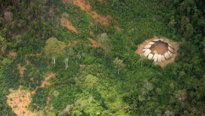 Tribu Moxihatetema en Amazonie