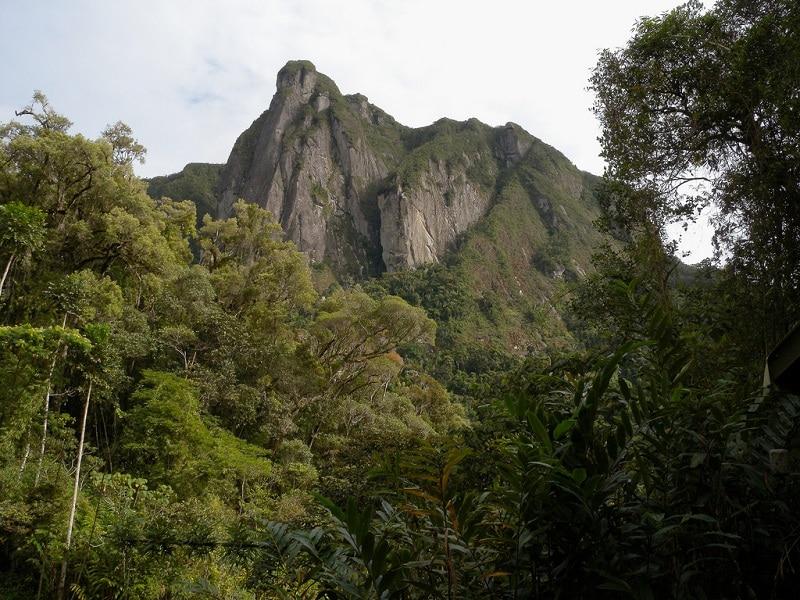 Parc national de Marojejy, Madagascar