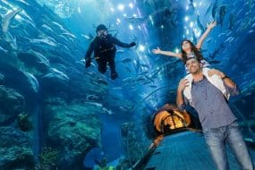 Aquarium de Dubai
