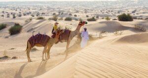 Safari à dos de chameau dans le désert de Dubai