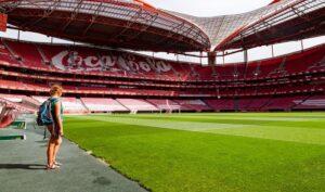 Stade de la Luz à Lisbonne