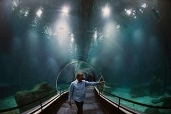 Réservation de billets pour l'aquarium de Rio de Janeiro