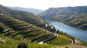 Vallée du Douro à Porto
