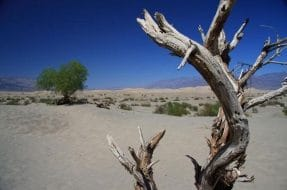 Vallée de la Mort depuis Las Vegas