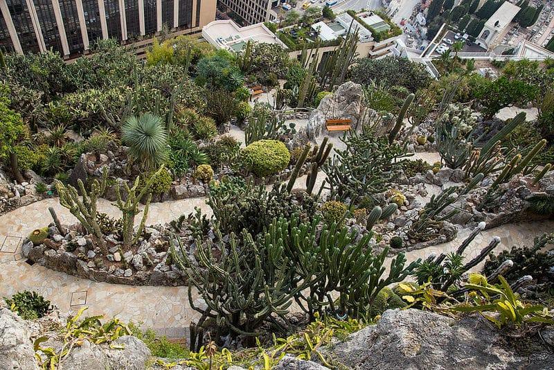 Jardin exotique, Monaco