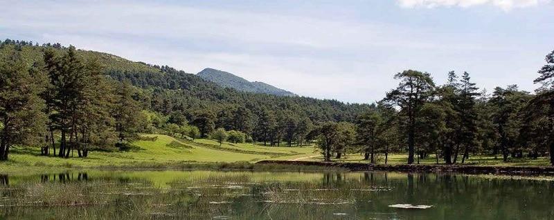 Lac de Thorenc