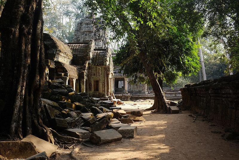Ta Prohm, temples Angkor