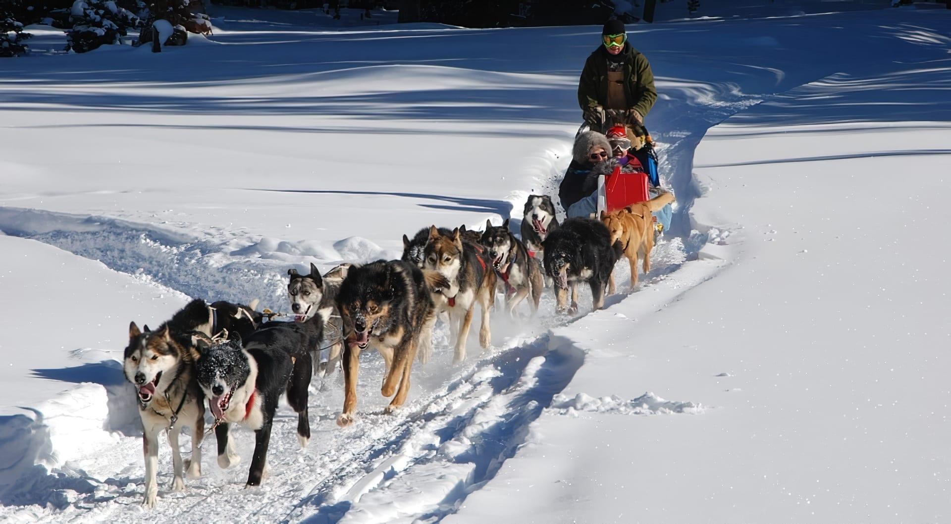 Activités en hiver au Canada