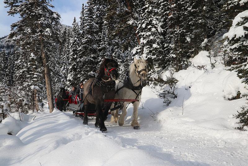 Traîneau à cheval, Canada en hiver