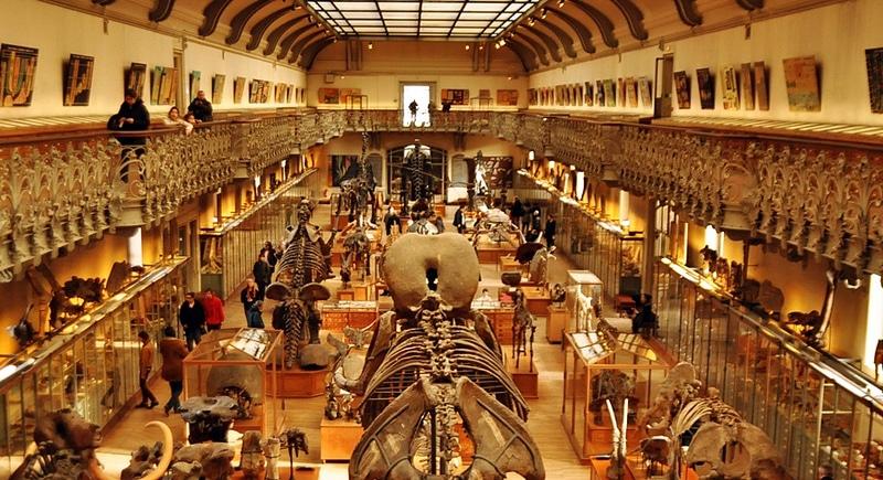 Muséum National d'Histoire Naturelle, Paris
