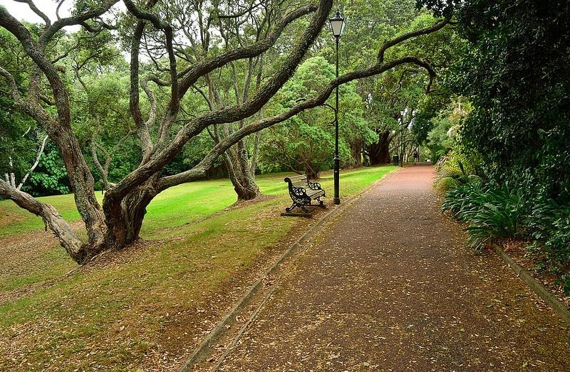Grafton, loger à Auckland