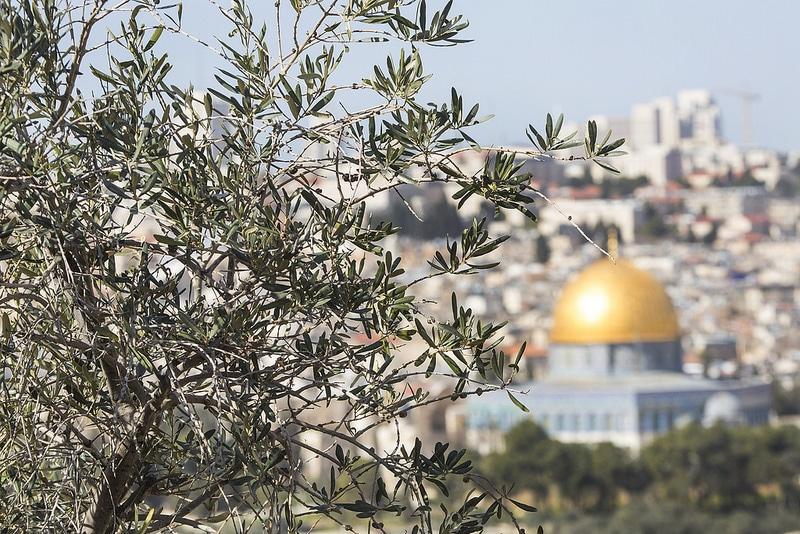 Mont des Oliviers, loger à Jérusalem