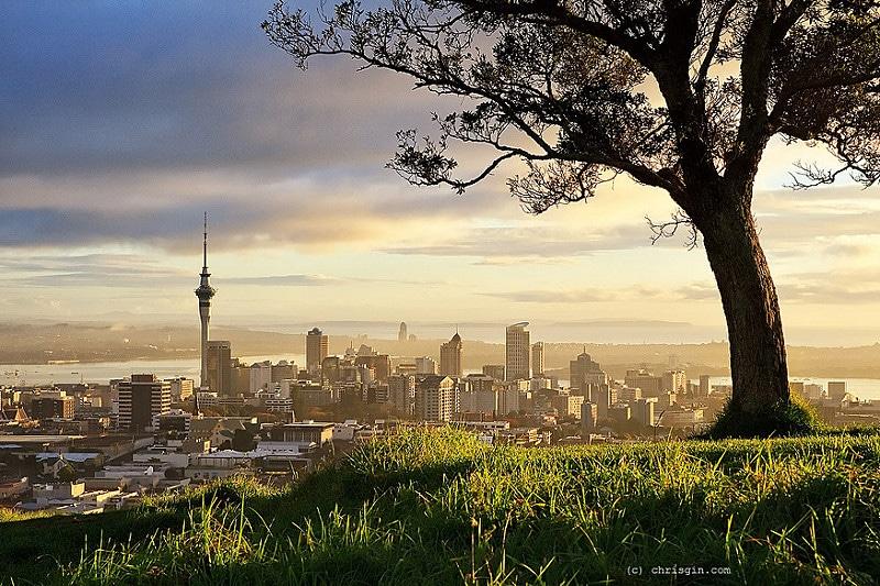 Mount Eden, loger à Auckland