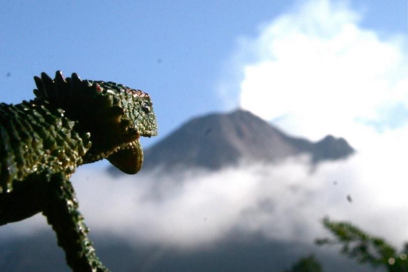 Voyager comme un local au Costa Rica