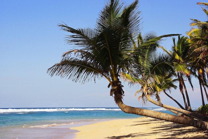 Loger A Punta Cana En Republique Dominicaine