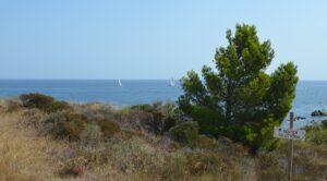 Camping Argeles Sur Mer