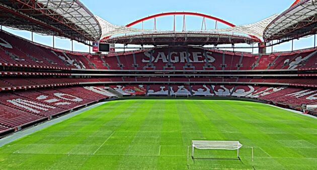 Visiter le stade de Luz et le musée Benfica à Lisbonne