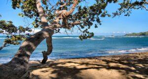 Guide Voyage en République Dominicaine