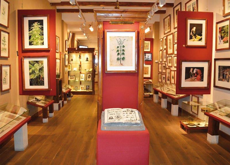 Musée Insolite, Musée du Canabis