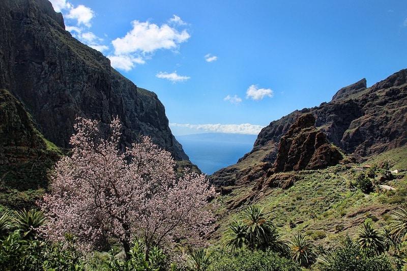 Les 10 choses à faire à Tenerife