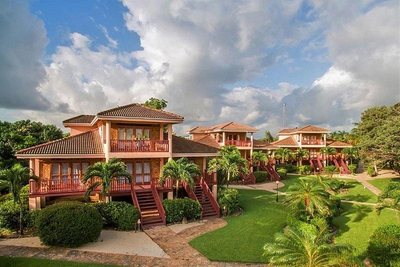 Buttonwood, loger à Belize City