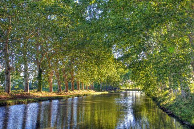 Croisière sur le Canal du Midi : que faire sur le tracé du canal ?
