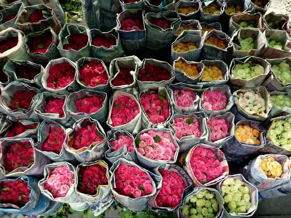 Flower Market Pak Khlong