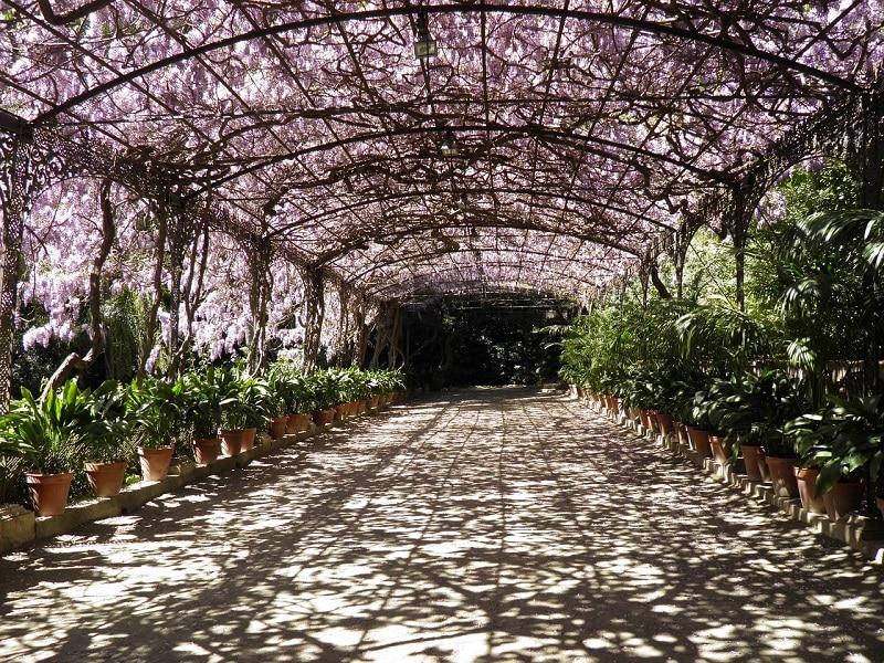 Visiter Malaga, jardin botanique