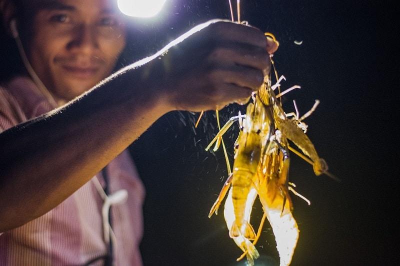 Région des Cardamomes au Cambodge, repas du soir