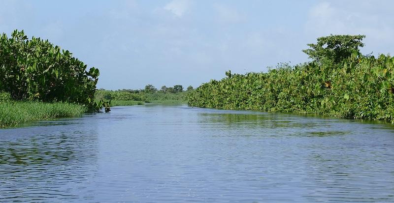 Réserve de Kaw, Guyane française