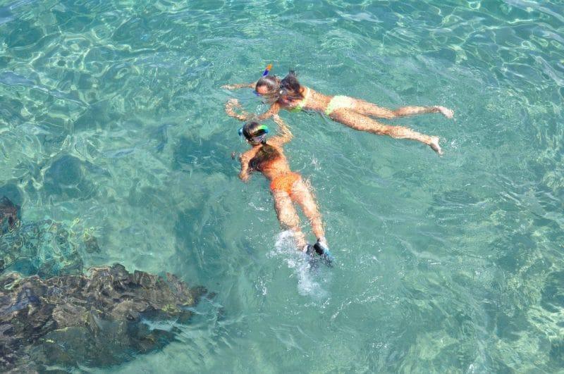 Belize, nager avec des requins