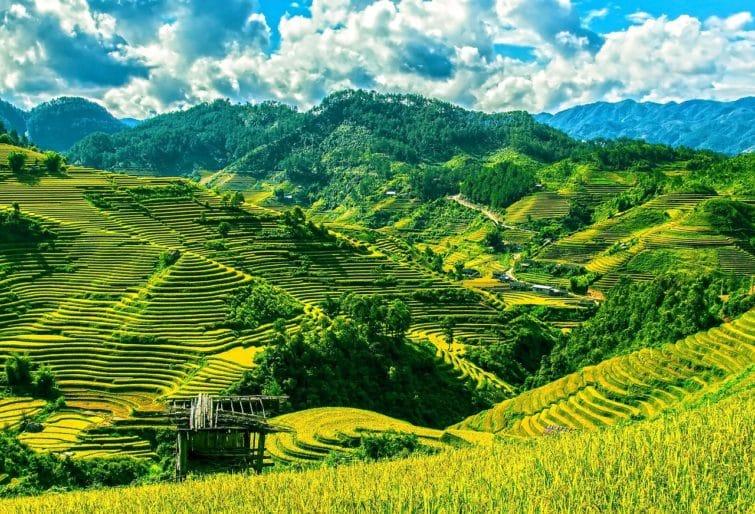 Vietnam, voyager après l'été