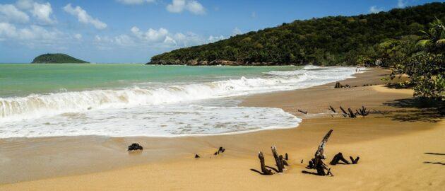Voyage en Guadeloupe à la meilleure période : Vols A/R à partir de 236€ vers Pointe-à-Pitre