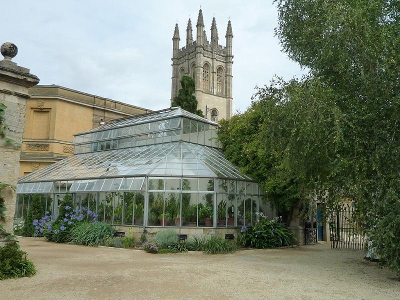 Jardin botanique d'Oxford