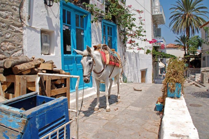 Balades à dos d'âne, Hydra, Grèce