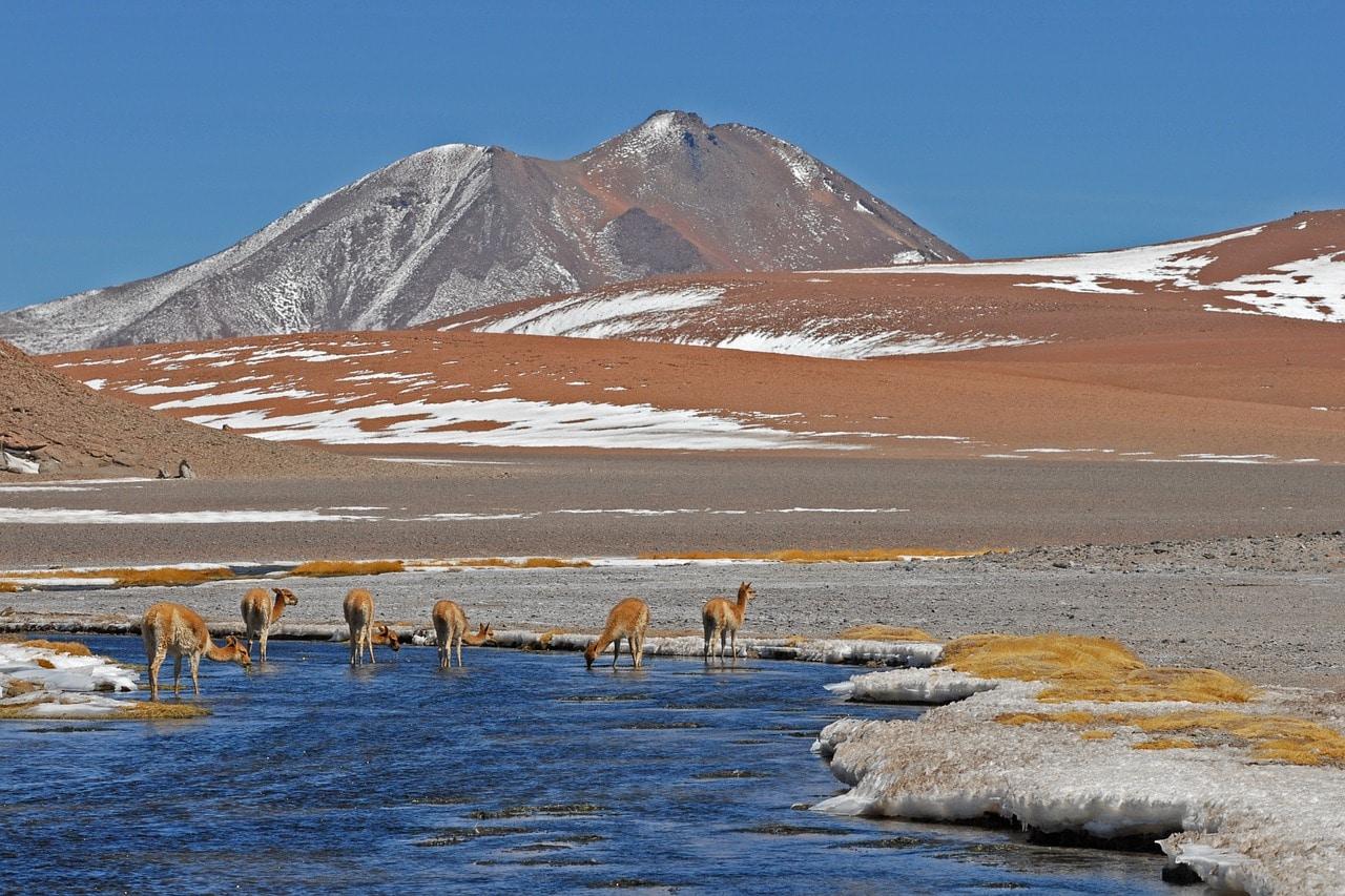 Road trip au Chili : 1 semaine à partir de 529€ (vols A/R et voiture de location inclus)
