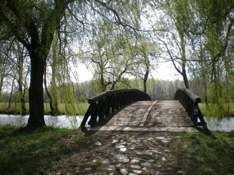 Lac Vekeri, Debrecen, Hongrie
