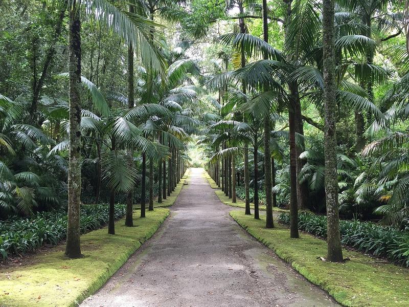 Jardin botanique Terra Nostra, Açores