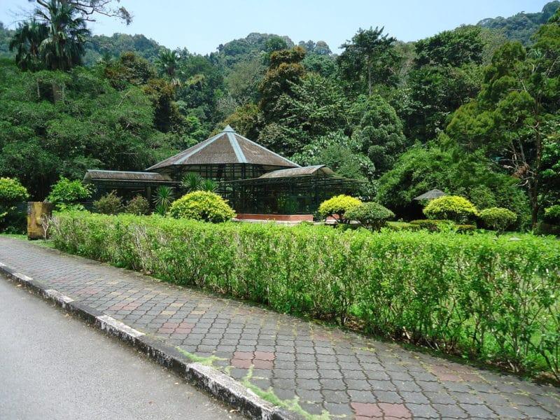 Jardin Botanique, Penang