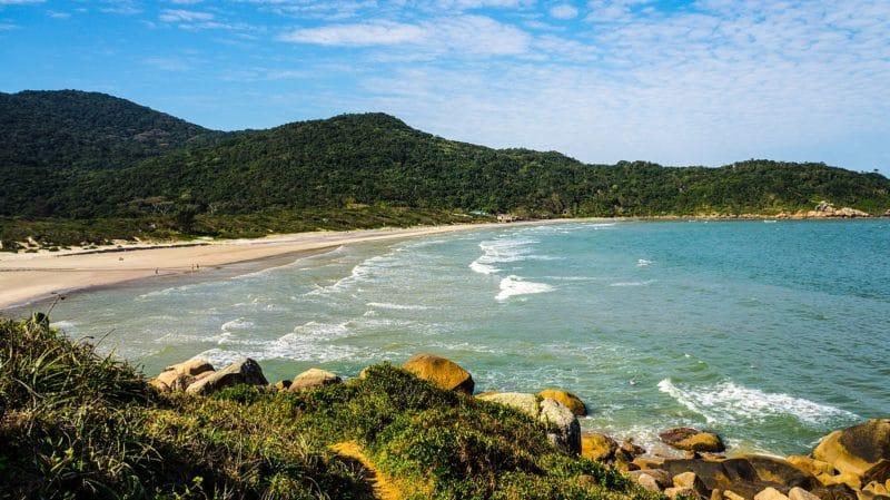 Plage Praia de Naufragados, Florianópolis