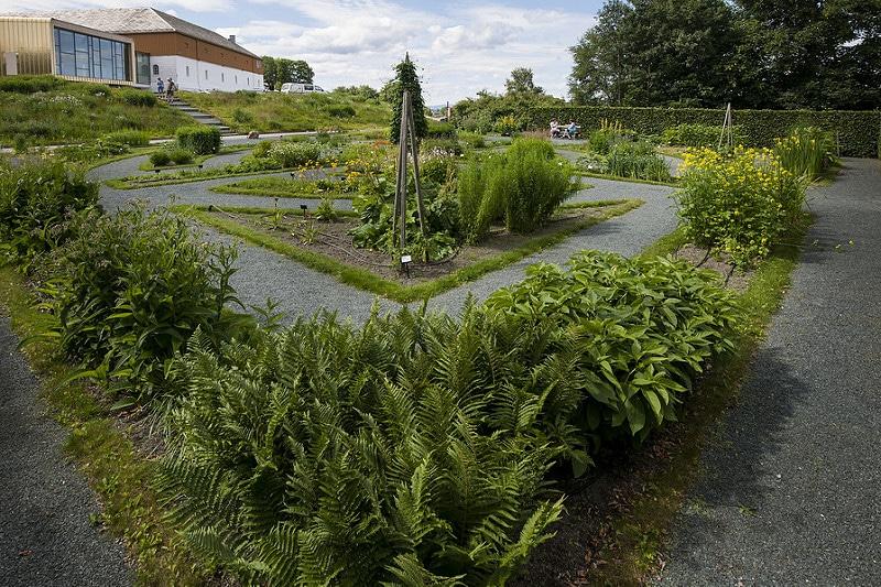 Jardin botanique Ringve, Trondheim